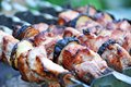 Shish kebab dof on skewers and hot coals Stock Photography