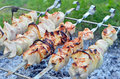 Shish kebab dof on skewers and hot coals Royalty Free Stock Photography