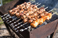 Shish kebab of the pork and chiken Royalty Free Stock Photo