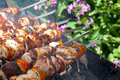 Shish kebab on skewers tasty Stock Image