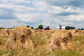 Shocks of oats bundels cut in placed in in an amish field Royalty Free Stock Photos