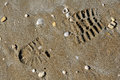 Shoe print in the sand of a with seashells Royalty Free Stock Photo