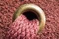 Shoelace closeup close up of burgundy Stock Image