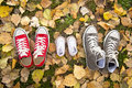 Shoes in father big, mother medium and son or daughter small kid size in family love concept Royalty Free Stock Photo
