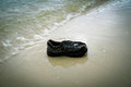 Shoes garbage beach and wastes on the Royalty Free Stock Photos