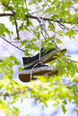 Shoes street art hanged up Stock Images