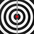 Shooting range target Royalty Free Stock Photo