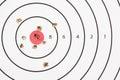 Shooting Target Bullet Holes