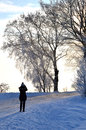 Shooting winter view Royalty Free Stock Photo