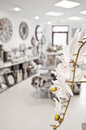 Shop interior with orchid flower Royalty Free Stock Photo
