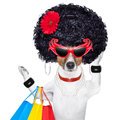 Shopaholic diva dog shopping like a pro holding a bunch of bags Royalty Free Stock Images