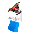 Shopaholic shopping dog holding a blue bag wearing sunglasses Stock Image