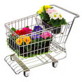 Shopping cart with flowers Royalty Free Stock Photo