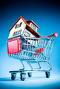 Shopping cart and house Stock Photography