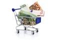 Shopping cart and money euros on the white Stock Photo