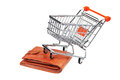 Shopping cart and purse Stock Image