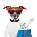 Shopping dog Royalty Free Stock Photos