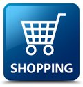 Shopping blue square button Royalty Free Stock Photo