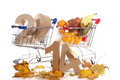 Shoppingcart in autumn Royalty Free Stock Photo