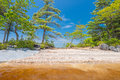 Shore of lake kejimkujik national park nova scotia canada Royalty Free Stock Image