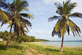 Shoreline in Mozambique, Africa. Royalty Free Stock Photo