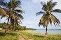 Shoreline In Mozambique, Africa.