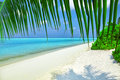 Shoreline of a tropical island in the maldives and view the indian ocean Stock Image