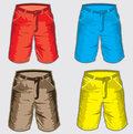 Short pant bermuda shorts vector illustration of the Royalty Free Stock Photos