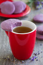 Shortbread with dried lavender and vanilla Royalty Free Stock Photography