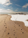Shot beach anderby creek east coast england march coldest i have ever been beach Royalty Free Stock Image