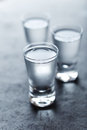 Shot glasses of cold vodka Royalty Free Stock Photo