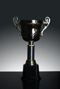 Shot of gold award trophy in gray background Royalty Free Stock Photo
