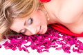 Shot of sexy woman in red dress with rose petals isolated on white background Royalty Free Stock Photography
