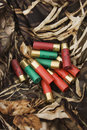 Shotgun shells. Royalty Free Stock Photos