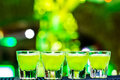 Shots on the bar four green alcohol Royalty Free Stock Photos