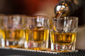 Shots drinks in cocktail nightclub barman makes whisky shot row alcoholic Royalty Free Stock Image