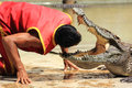 Show of crocodiles head into the jaws of a crocodile thailand samutprakan oct traditional for thailand trainer put his on Stock Image
