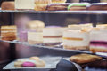Showcase with deserts cakes and cheesecakes Royalty Free Stock Photos