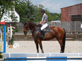Showjumping Obraz Royalty Free