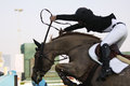 Showjumping Takeoff Action Royalty Free Stock Photo