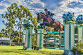 Showpark jumper classic horse and rider presented by equifit inc held on the del mar horsepark grass field Royalty Free Stock Image