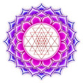 Shree Yantra Lotus Royalty Free Stock Photo