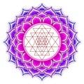 Shree Yantra Lotus