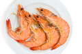 Shrimp boiled on white plate Royalty Free Stock Images
