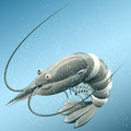 The shrimp illustration with in sea water drawn in cartoon style Royalty Free Stock Image