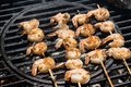 Shrimp kabobs on round grill over hot coals horizontal layout Royalty Free Stock Photo