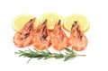 Shrimp with lemon and rosemary on a white background Royalty Free Stock Photo
