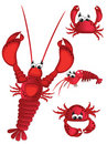Shrimp,lobster and crabs Royalty Free Stock Photos