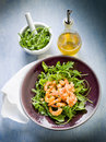 Shrimp salad with arugula Stock Photos