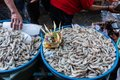 stock image of  Shrimp sellers in traditional markets Badung sold the shrimp on the tray which was previously served by a canang as a blessing